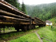 Pre človeka, ktorému sú lesné železnice blízko, je toto pohľad na nezaplatenie...