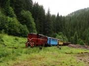 Vlak vezúci drevo a robotníkov po celom týždni dolu